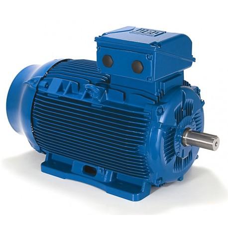 Moteur 1.50 KW, 1000 tr/min, 220-240/380-415//460V, HA 100