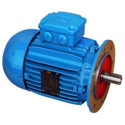 Moteur triphasé WEG B5, 0.18 KW, 1000 tr/min, 230/400V, IE3, Fonte